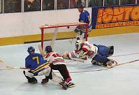 CAMPEONATO DEL MUNDO DE HOCKEY LINEA IIHF 2002